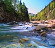 γρήγορος ποταμός βουνών στοκ φωτογραφία με δικαίωμα ελεύθερης χρήσης
