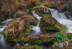 Γρήγορο ρεύμα και πεσμένα φύλλα στους βράχους στοκ εικόνες με δικαίωμα ελεύθερης χρήσης