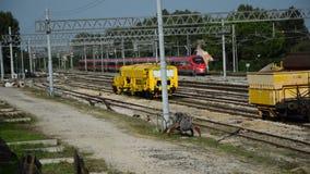 Γρήγορο τραίνο στη ράγα φιλμ μικρού μήκους