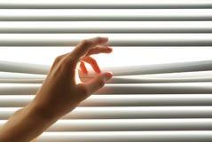 γρίλληα παραθύρου χεριών &a Στοκ Εικόνες