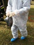 γρίπη κινδύνου 2 πουλιών Στοκ Φωτογραφία