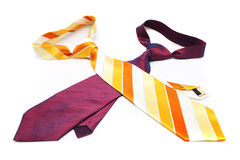 γραβάτες δύο Στοκ Εικόνες