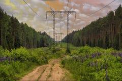 Γραμμές ηλεκτρικής δύναμης υψηλής τάσης Στοκ Εικόνες