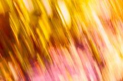 Γραμμές θαμπάδων χλόης με τα κόκκινα πορτοκαλιών, και τα κίτρινα Στοκ Εικόνες