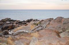 Γραμμή ακτών γρανίτη: Κόλπος αποθηκών, δυτική Αυστραλία Στοκ φωτογραφία με δικαίωμα ελεύθερης χρήσης