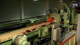 Γραμμή για το ξύλο επεξεργασίας και ξυλεία στις εγκαταστάσεις ξυλουργικής και επίπλων απόθεμα βίντεο