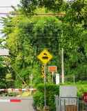 Γραμμή κατόχων διαρκούς εισιτήριου με το κίτρινο οδικών τραίνων σημαδιών απεικόνισης δέντρο μπαμπού συμβόλων πράσινο ως υπόβαθρο Στοκ φωτογραφίες με δικαίωμα ελεύθερης χρήσης
