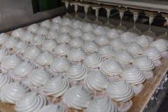Γραμμή παραγωγής εργοστασίων βιομηχανιών ζαχαρωδών προϊόντων Manufactory ψησίματος μηχανή Zephyr και marshmallows ή τριαντάφυλλων Στοκ φωτογραφία με δικαίωμα ελεύθερης χρήσης