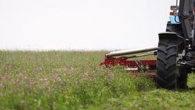 Γραμμή τρακτέρ γεωργίας που κόβει στο περιθώριο χλόης στο αγρόκτημα απόθεμα βίντεο