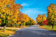 Γραμμή χρωμάτων φθινοπώρου μια οδός στοκ εικόνες