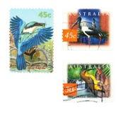 γραμματόσημα πουλιών Στοκ Εικόνες