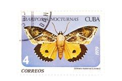 γραμματόσημο πεταλούδων Στοκ εικόνες με δικαίωμα ελεύθερης χρήσης