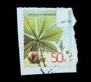 Γραμματόσημο που απομονώνεται Στοκ φωτογραφία με δικαίωμα ελεύθερης χρήσης