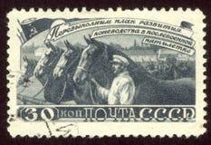 γραμματόσημο που τυπώνεται από τη Ρωσία Στοκ Εικόνα