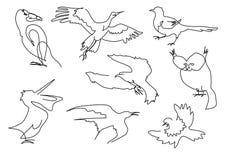γραμμικό σύνολο σκιαγραφιών πουλιών σκίτσων Στοκ φωτογραφίες με δικαίωμα ελεύθερης χρήσης