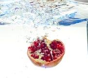 Γρανάτης στο νερό Στοκ Εικόνες