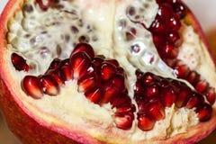 Γρανάτης φρούτων Στοκ εικόνα με δικαίωμα ελεύθερης χρήσης