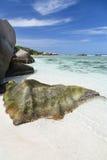 Γρανίτης και άσπρη παραλία, Λα Digue, Σεϋχέλλες Στοκ Εικόνες