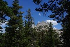 Γρανίτης Yosemite Στοκ εικόνες με δικαίωμα ελεύθερης χρήσης