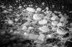 Γραπτά χαλίκια που δημιουργούν μια λίμνη βράχου στοκ εικόνα