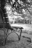 Γραπτή άποψη με έναν πάγκο και μια λίμνη στοκ φωτογραφίες με δικαίωμα ελεύθερης χρήσης