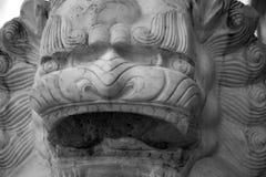 Γραπτή κινεζική κινηματογράφηση σε πρώτο πλάνο αγαλμάτων προσώπου λιονταριών υποβάθρου Στοκ Εικόνες