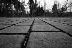 Γραπτή κινηματογράφηση σε πρώτο πλάνο μιας διάβασης πεζών τούβλου Στοκ φωτογραφία με δικαίωμα ελεύθερης χρήσης