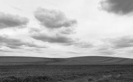 Γραπτοί αγροτικοί λόφοι στον ορίζοντα στη Αϊόβα στοκ εικόνα με δικαίωμα ελεύθερης χρήσης