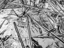 Γραπτοί λάσπη και κάλαμοι Στοκ Εικόνα