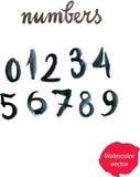 Γραπτοί χέρι μαύροι αριθμοί Watercolor Διανυσματική απεικόνιση - άρρωστη Στοκ Φωτογραφίες