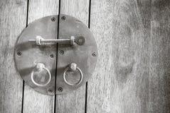 Γραπτός εκλεκτής ποιότητας μαύρος σύρτης στο ξύλο Στοκ Εικόνα