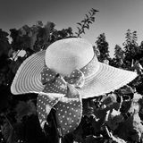 Γραπτό καπέλο αχύρου Στοκ Φωτογραφία