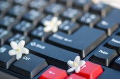 Γραπτό κλειδί πληκτρολογίων με το μικροσκοπικό άσπρο λουλούδι Στοκ εικόνες με δικαίωμα ελεύθερης χρήσης