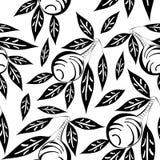 γραπτό σχέδιο ελιών Στοκ Εικόνα