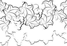 Γραπτό σχέδιο από την άμπελο και τα φύλλα Στοκ Εικόνες