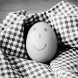 Γραπτό ύφος τόνου χρώματος αυγών χαμόγελου Στοκ φωτογραφίες με δικαίωμα ελεύθερης χρήσης