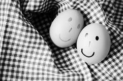 Γραπτό ύφος τόνου χρώματος αυγών χαμόγελου Στοκ Εικόνες