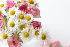 Γραφείο γραφείων γυναικών με τα λουλούδια ανθών στοκ εικόνα με δικαίωμα ελεύθερης χρήσης