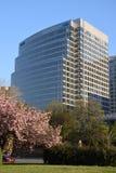 Γραφείο Deloitte στην Ουάσιγκτον, συνεχές ρεύμα Στοκ Εικόνες