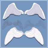 Γραφικά φτερά Μπροστινό και πίσω μέρος πλευρά Στοκ Εικόνες