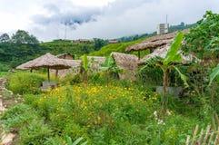 Γραφικές καλυμμένες άχυρο καλύβες και πράσινος κήπος Στοκ φωτογραφία με δικαίωμα ελεύθερης χρήσης
