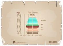 2016-2020 γραφικές παραστάσεις πυραμίδων πληθυσμού με τη γενεά 4 Στοκ φωτογραφία με δικαίωμα ελεύθερης χρήσης
