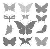 Γραφικές σκιαγραφίες πεταλούδων Στοκ Εικόνες