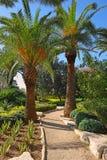 Γραφική γωνία στο πάρκο Ramat Hanadiv, Ισραήλ στοκ φωτογραφίες με δικαίωμα ελεύθερης χρήσης