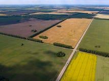 Γραφική εναέρια άποψη του καλλιεργήσιμου εδάφους στους πολύχρωμους τομείς με τις συγκομιδές που σπέρνονται και που αυξάνονται γεω στοκ εικόνα