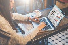 Γραφική παράσταση και διαγράμματα στη οθόνη υπολογιστή Γυναίκα που αναλύει τα στοιχεία Σπουδαστής που μαθαίνει on-line Λειτουργών