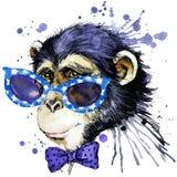 Γραφική παράσταση μπλουζών πιθήκων απεικόνιση πιθήκων με το κατασκευασμένο υπόβαθρο watercolor παφλασμών ασυνήθιστος πίθηκος φ wa απεικόνιση αποθεμάτων