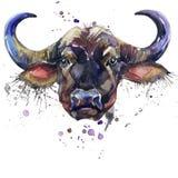 Γραφική παράσταση μπλουζών Buffalo, αφρικανική απεικόνιση βούβαλων ζώων με το κατασκευασμένο υπόβαθρο watercolor παφλασμών απεικόνιση αποθεμάτων