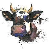 Γραφική παράσταση watercolor αγελάδων ζωική απεικόνιση αγελάδων Στοκ Εικόνα