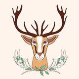 Γραφική συρμένη χέρι διανυσματική απεικόνιση κινούμενων σχεδίων ελαφιών διακοπών doodle με τον ελαιόπρινο ανθοδεσμών, άγριο ζώο μ Στοκ Εικόνες